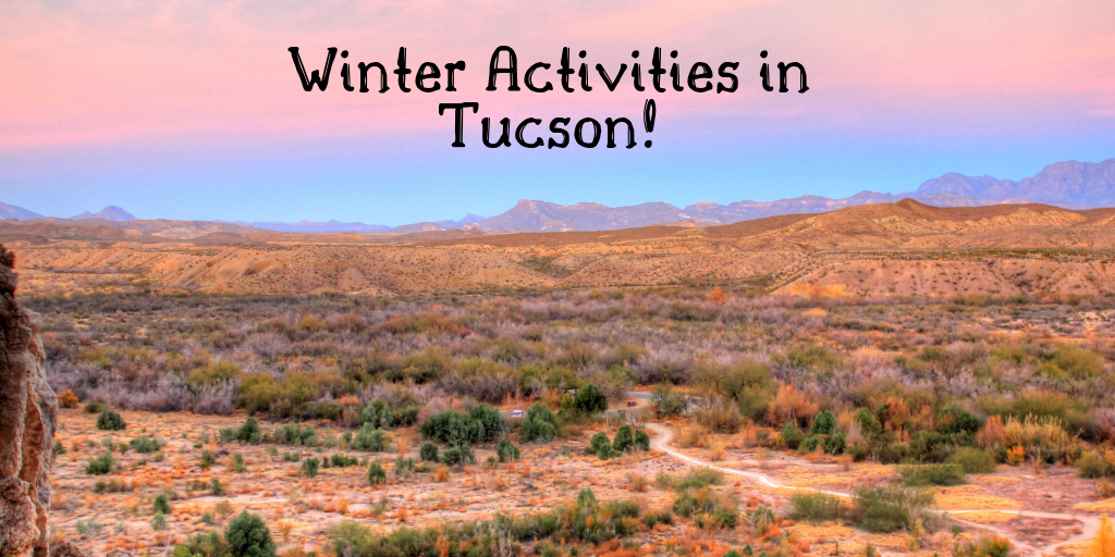 """January in Tucson is a magical time. It is the closest to winter we get, with temperatures cooler then Phoenix and snow covering the peaks of Mt. Lemmon. Make the best of your Tucson """"winter"""" this year with these awesome Tucson adventures."""