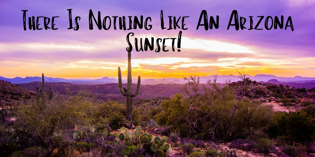 There is nothing like an Arizona sunset. Catch a solar masterpiece from up high on top of Tumamoc Hill. It's a little work to get to the top, but your payoff is gorgeous views of the city.