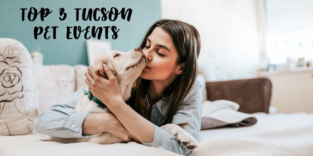 If you are living in or visiting Tucson in the coming months you'll want to check out these Tucson pet events. These are the top 3 Tucson dog events in Tucson and the surrounding areas. These are all events that your pup can attend with you!
